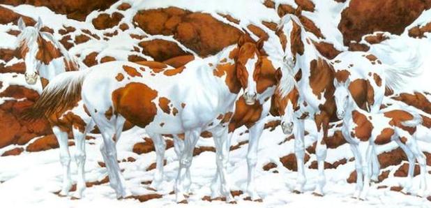 How Many Horses Optical Illusion